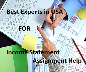 Income Statement Assignment Help