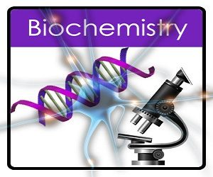 Biochemistry Assignment Help