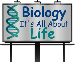 biology assignment help biology homework help biology help biology assignment help