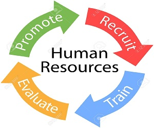 human resource management assignment help hr assignment help human resource management assignment help