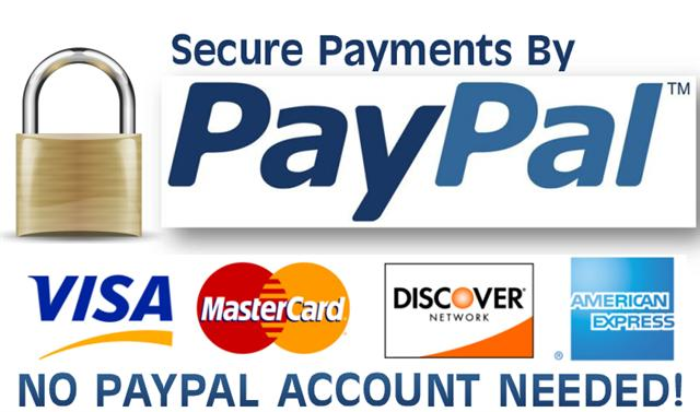 Paypal paynow