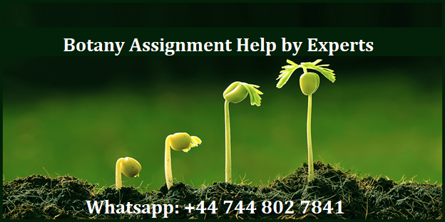 botany assignment help
