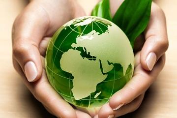 international development assignment help