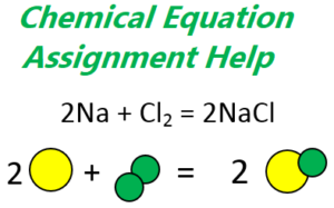 chemical equation assignment help