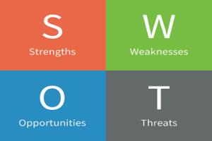 SWOT analysis assignment help
