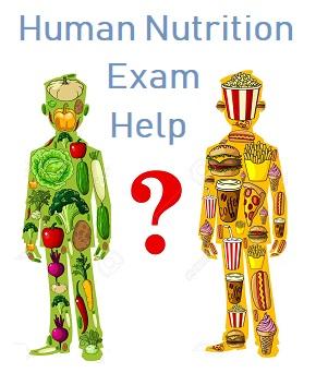 human nutrition final exam help
